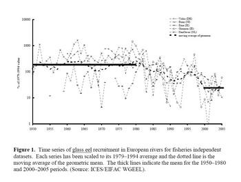 FAO Fig 1.jpg